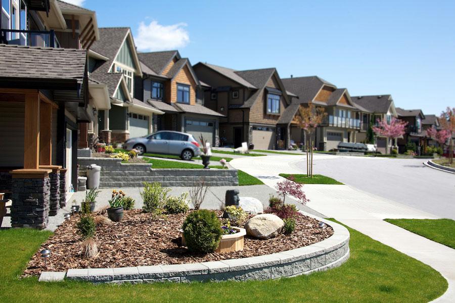Belvedere Calgary